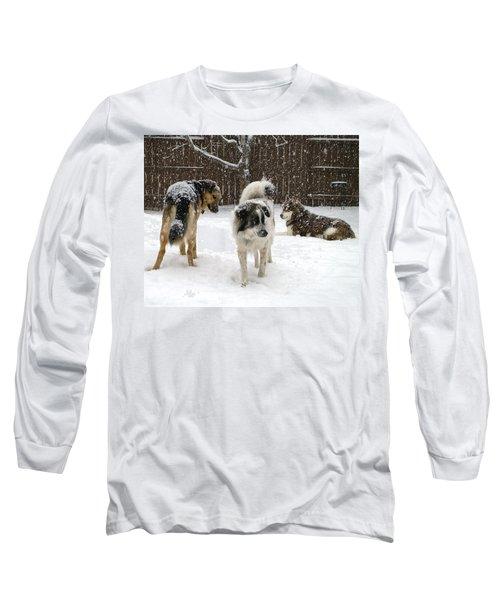 Spring Snow #2 Long Sleeve T-Shirt