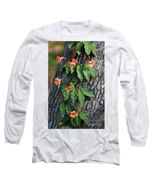 Long Sleeve T-Shirt featuring the photograph Vinery by Skip Willits