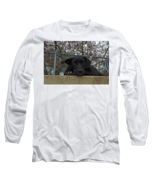 Springtime Independence Long Sleeve T-Shirt