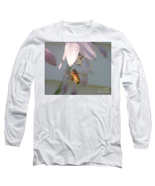 Stamen Attraction 2 Long Sleeve T-Shirt