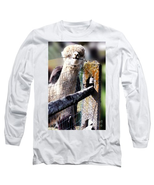 Long Sleeve T-Shirt featuring the photograph Sticks Taste Good by Polly Peacock