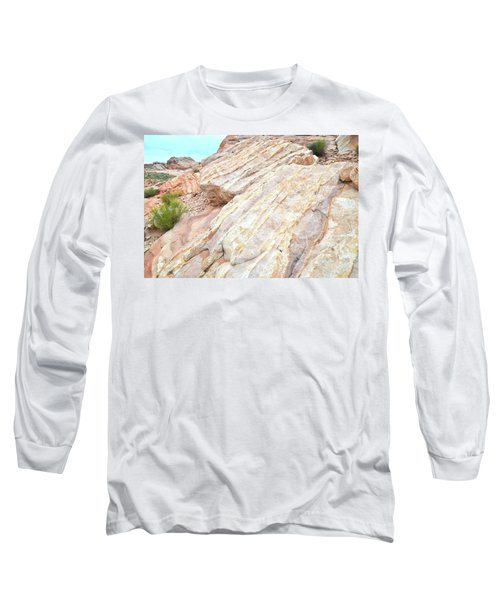 Long Sleeve T-Shirt featuring the photograph Stone Feet In Valley Of Fire by Ray Mathis