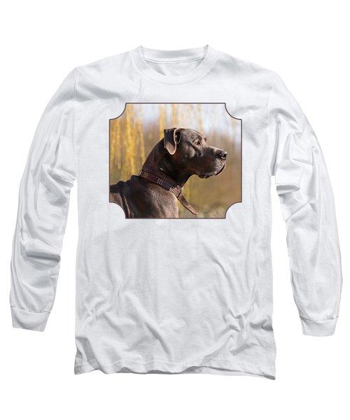 Storm The Great Dane Long Sleeve T-Shirt