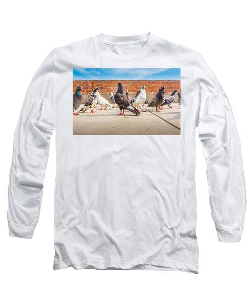 Street Pigeons. Long Sleeve T-Shirt