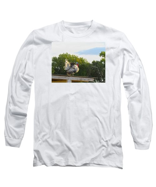 Long Sleeve T-Shirt featuring the photograph Strutting His Stuff by Brenda Pressnall