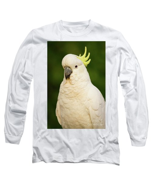 Sulphur Crested Cockatoo Long Sleeve T-Shirt by Craig Dingle