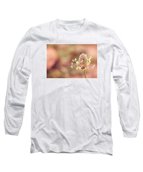 Sunburst Long Sleeve T-Shirt