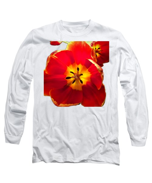 Sunkissed Tulips Long Sleeve T-Shirt