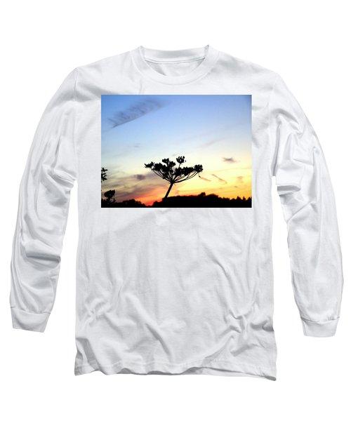 Sunset Seedhead Silhouette  Long Sleeve T-Shirt