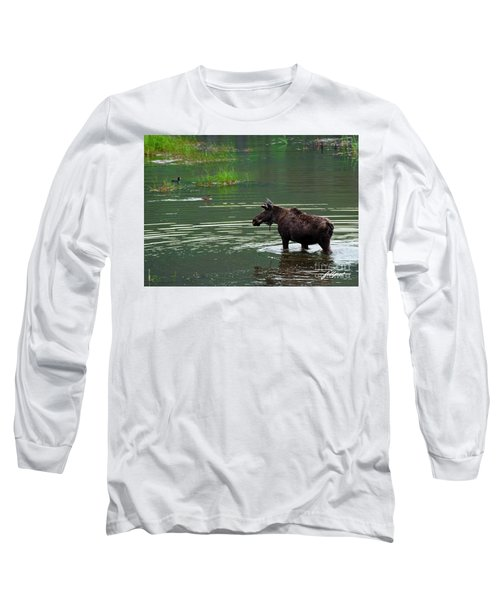 young Moose in spring pond Long Sleeve T-Shirt