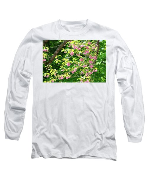 Sweeping Cherry Blossom Branches Long Sleeve T-Shirt