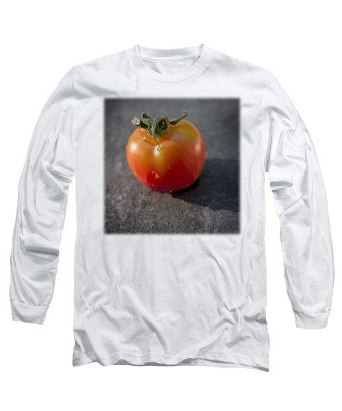 Sweet 100 T Long Sleeve T-Shirt by David Stone