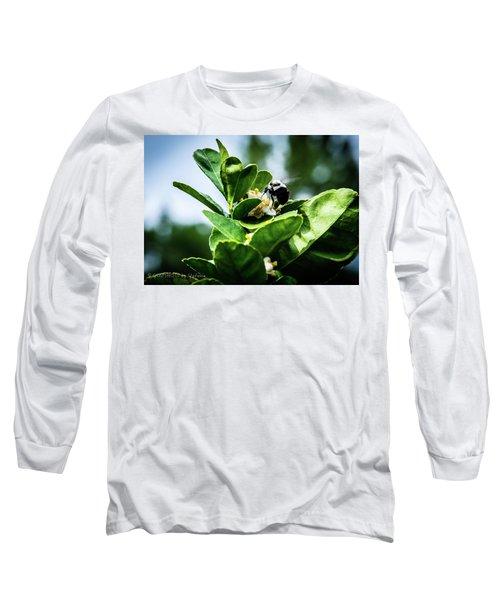 Sweet Bee Long Sleeve T-Shirt