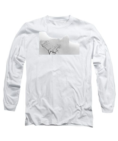 Taft Point In Mist Long Sleeve T-Shirt