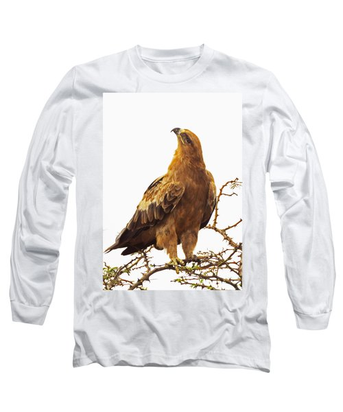 Tawny Eagle Long Sleeve T-Shirt by Patrick Kain