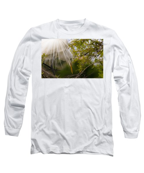Tending To The Nest Long Sleeve T-Shirt