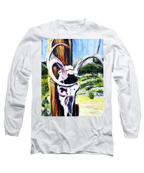 Texas Road Sign Long Sleeve T-Shirt