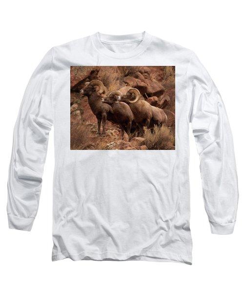 The Boys Long Sleeve T-Shirt