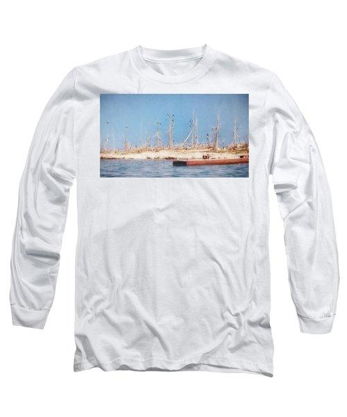 The Cormorants At Deaths Door Long Sleeve T-Shirt
