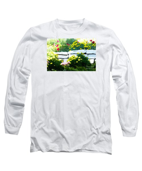 The Garden Wall Long Sleeve T-Shirt by David Blank