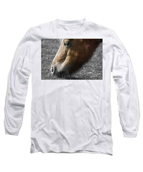The Hungry Horse Long Sleeve T-Shirt