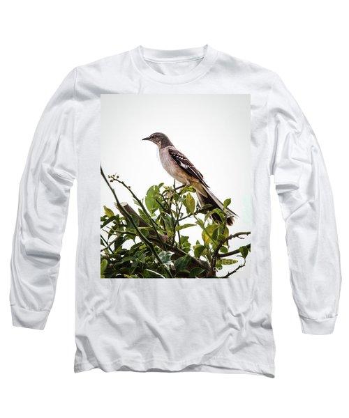 The Northern Mockingbird Long Sleeve T-Shirt