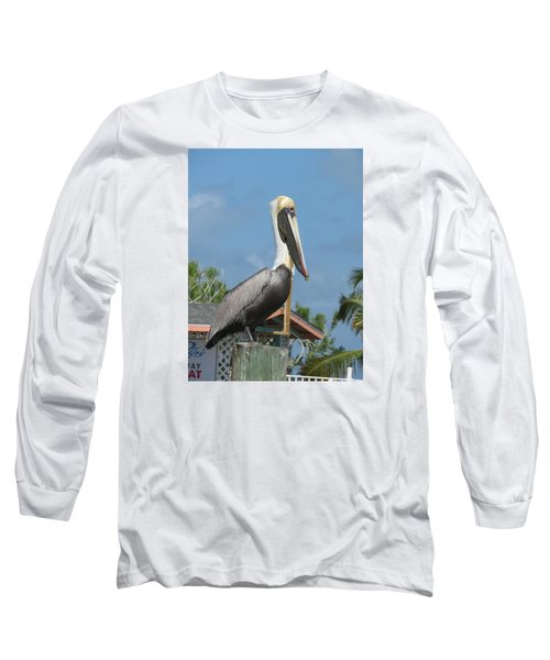 The Pelican Long Sleeve T-Shirt by Robin Regan