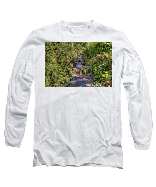 The Quinault Stream 2 Long Sleeve T-Shirt by Richard J Cassato