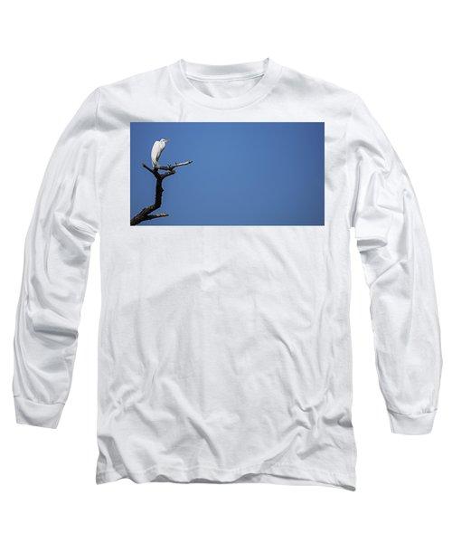 The Sentinel Long Sleeve T-Shirt
