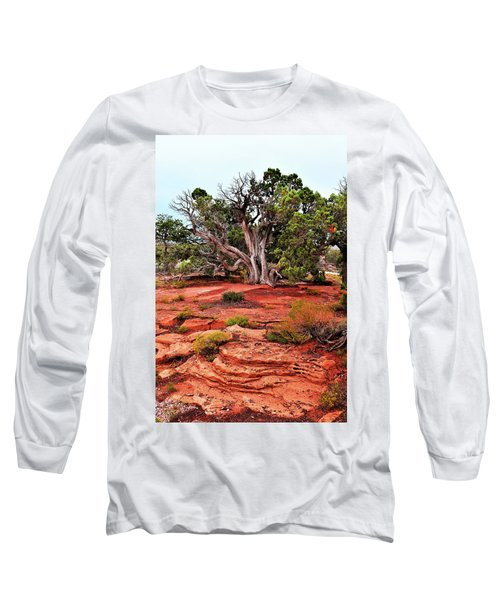 The Tree That Knows All Long Sleeve T-Shirt