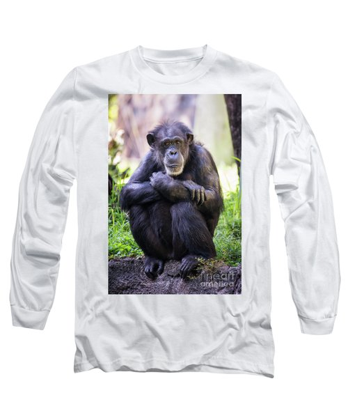 Thoughtful Chimpanzee  Long Sleeve T-Shirt by Stephanie Hayes