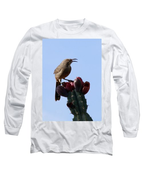 Thrasher Long Sleeve T-Shirt
