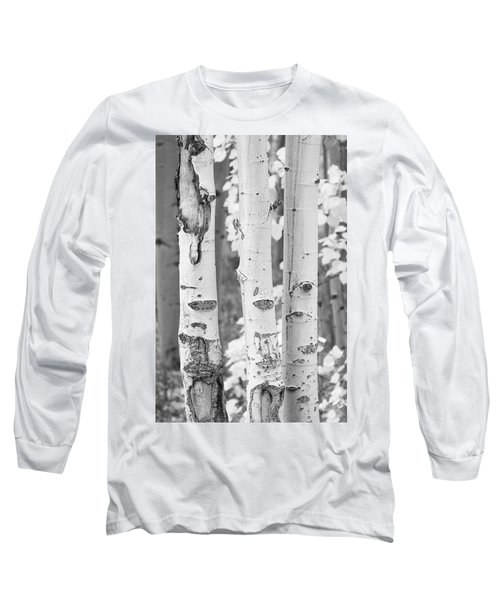 Three Aspens In Black And White  Long Sleeve T-Shirt