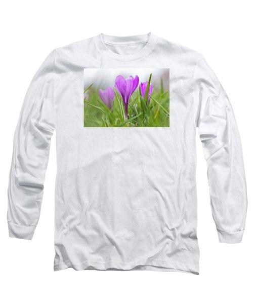Three Glorious Spring Crocuses Long Sleeve T-Shirt