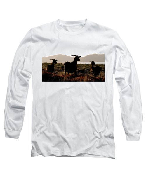 Long Sleeve T-Shirt featuring the photograph Three Goats by Pedro Cardona
