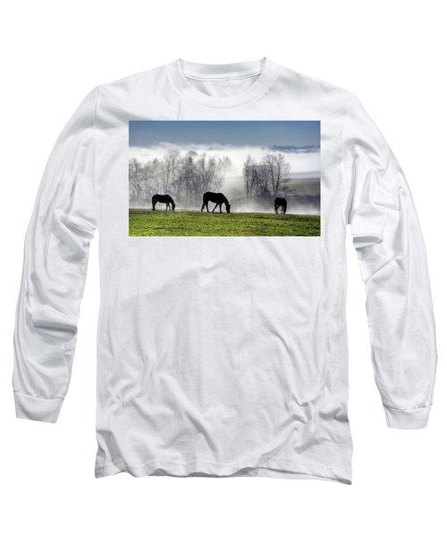 Three Horse Morning Long Sleeve T-Shirt