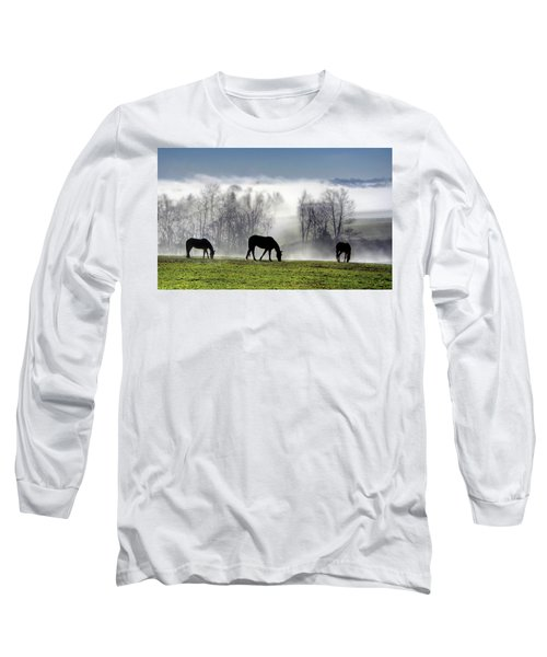 Three Horse Morning Long Sleeve T-Shirt