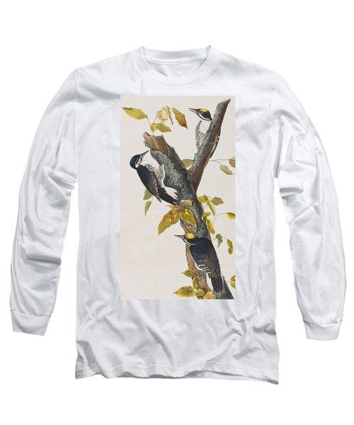 Three Toed Woodpecker Long Sleeve T-Shirt by John James Audubon
