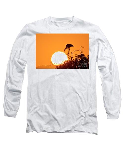 Touching The Sun Long Sleeve T-Shirt