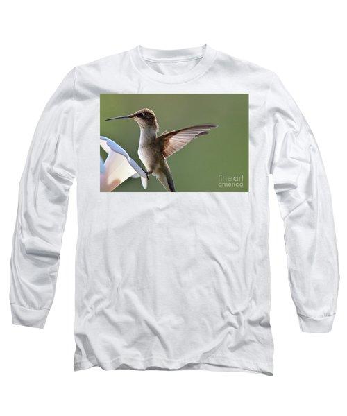 Transparent Winged Hummingbird Long Sleeve T-Shirt