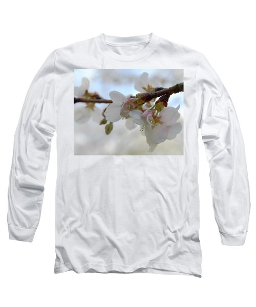 Dogwood Branch Pink Long Sleeve T-Shirt