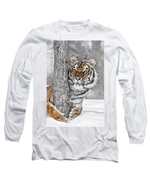 Tree Huggin Long Sleeve T-Shirt
