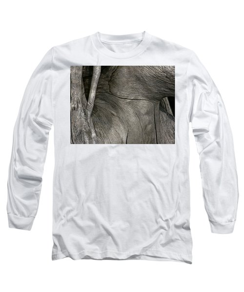 Long Sleeve T-Shirt featuring the photograph Tree Memories # 26 by Ed Hall