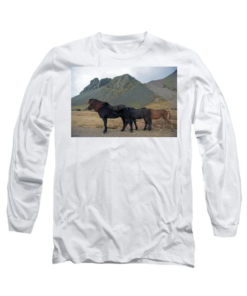 Long Sleeve T-Shirt featuring the photograph Tri - Color Icelandic Horses by Dubi Roman