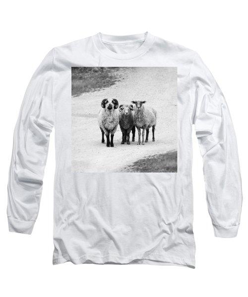Trio #1478 Long Sleeve T-Shirt by Andrey Godyaykin