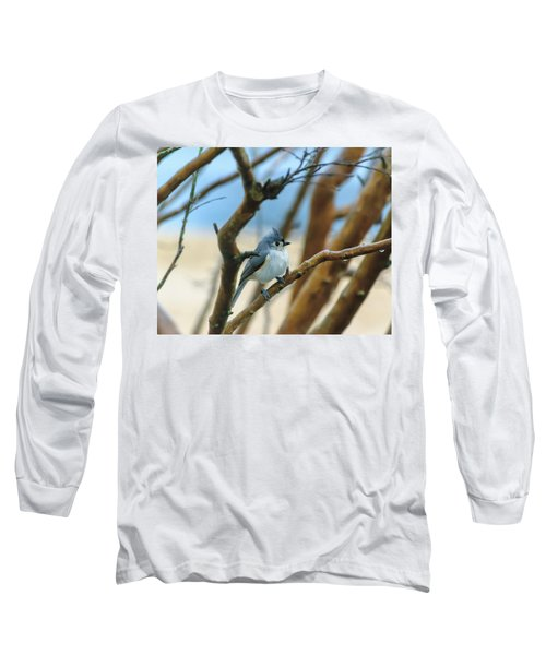 Tufted Titmouse In Tree Long Sleeve T-Shirt