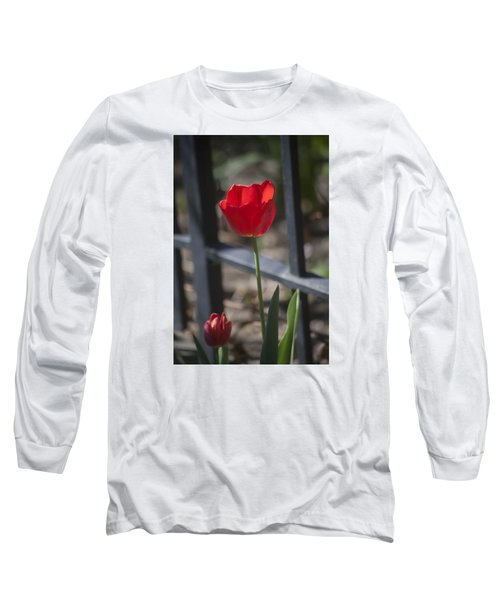 Tulip And Garden Fence Long Sleeve T-Shirt by Morris  McClung