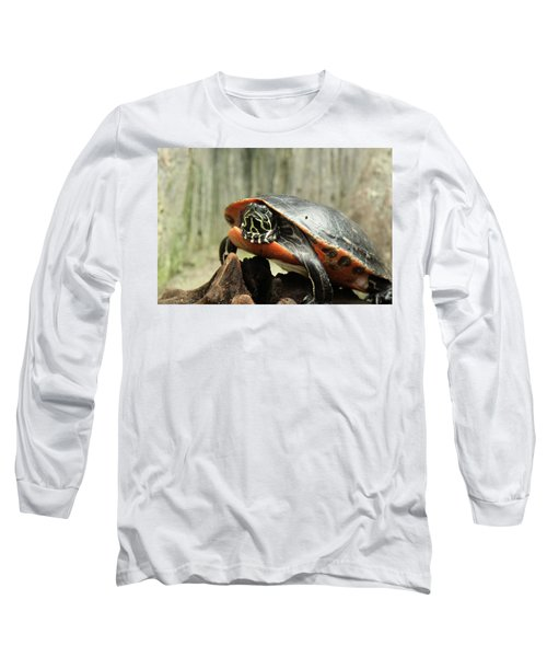 Turtle Neck Long Sleeve T-Shirt by David Stasiak