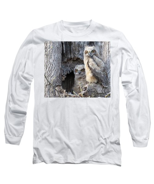 Twin Owls Long Sleeve T-Shirt by Jeanette Oberholtzer