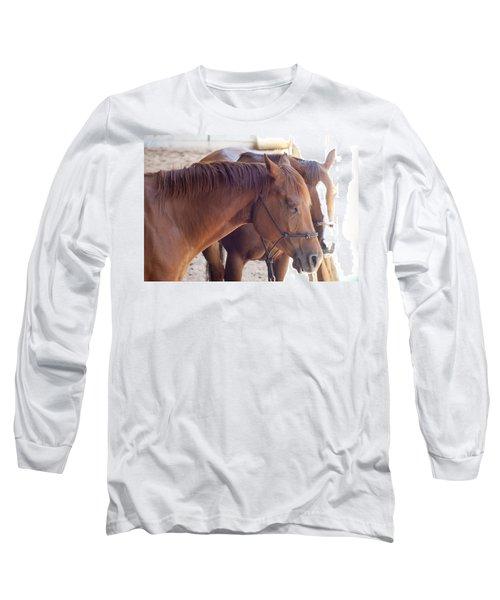 Two Horses Long Sleeve T-Shirt